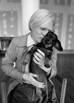 Andy Warhol from Commercial Artist to celebrated Pop Artist