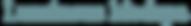 FINAL-Luminous-Wordmark.png