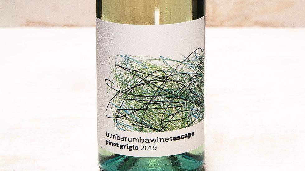 2019 Pinot Grigio