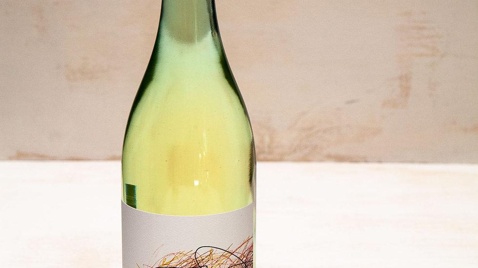 2019 Chardonnay 6 pack