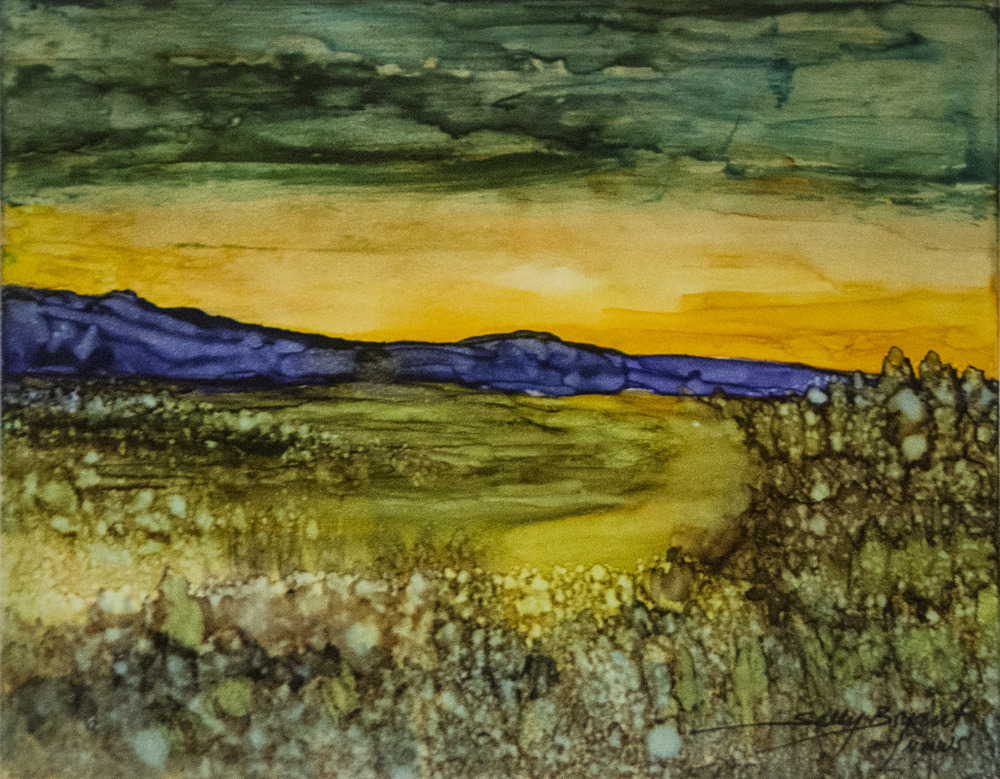 Sally Bryant, Yucca Gallery
