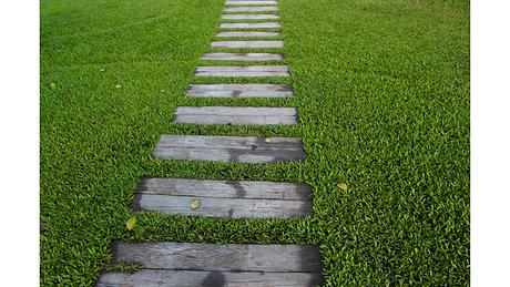 Rasen und Weg.png