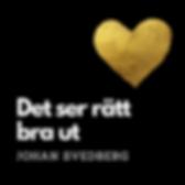 Det_ser_rätt_bra_ut_-_omslag.png