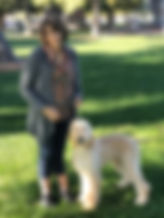 Afgan puppy.-jpeg.jpg