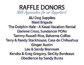 Raffle Donors - Revised .jpg