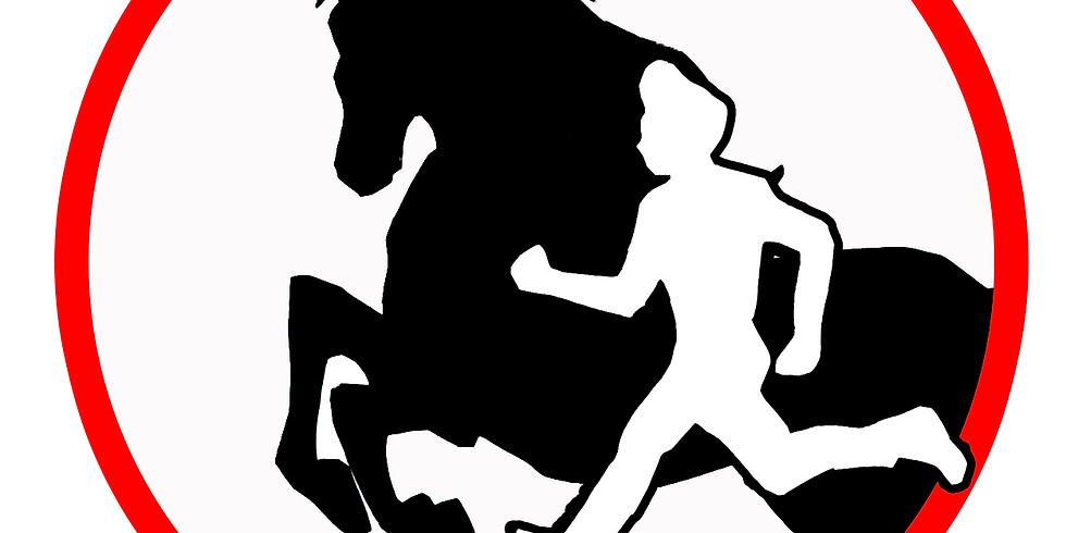 Horse Agility Schweizermeisterschaft 2019