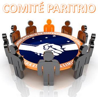 POSTULANTE COMITÉ PARITARIO