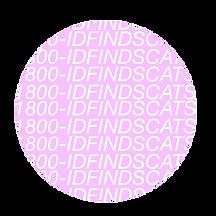 idfindscatsthumb.png