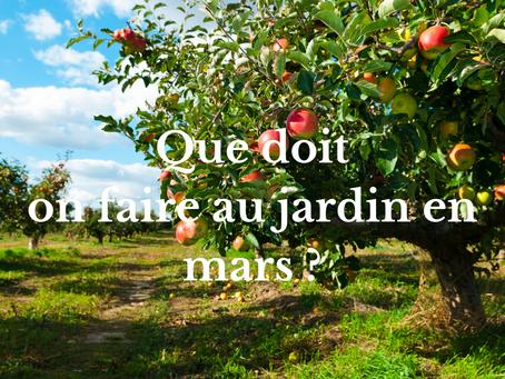Que doit on faire au jardin en mars ?