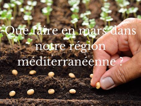 Que faire en mars dans notre région méditerranéenne ?