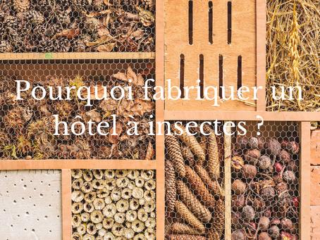 Pourquoi fabriquer un hôtel a insectes ?