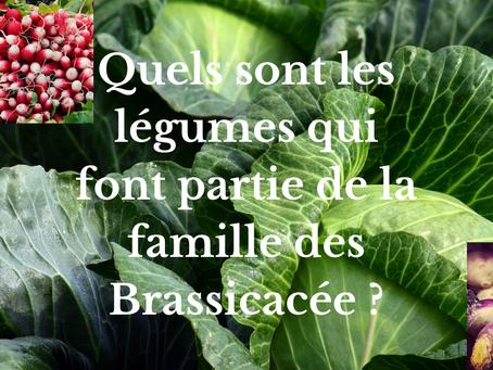 Quels sont les légumes qui font partie de la famille des Brassicacée ?