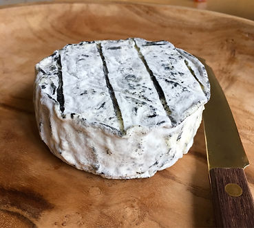 Monolith goats milk cheese