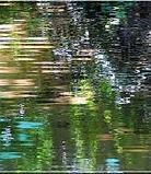 Reflets d'eau.jpg
