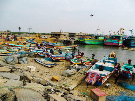 Fishing ban in Tamil Nadu: The need for a revision based on realities
