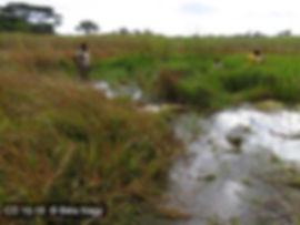 Locality Kamilundu CD 16-16