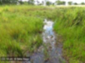 Locality Kasenga CD 16-20