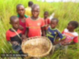 Locality Kilwa CD 16-15