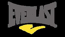 everlast-logo-15653528102.png
