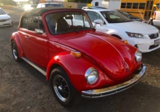 VW Convertible