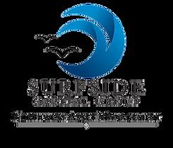 Surfside Capital Group