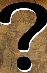 Futurescope-WHAT'S NEXT-Question Mark(Se