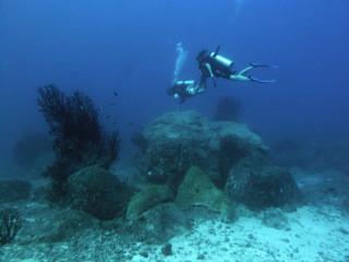 Plongée profonde – pédagogie