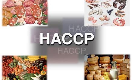 HACCP-PROGRAM.jpg