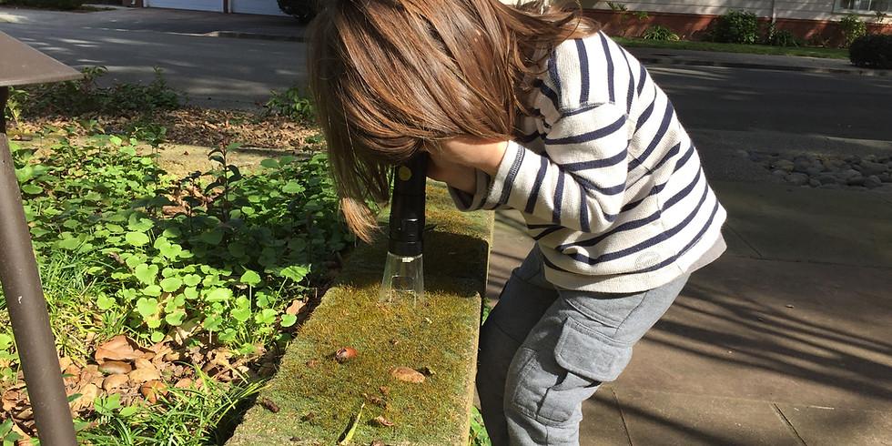 Meet Your Nature Neighbor