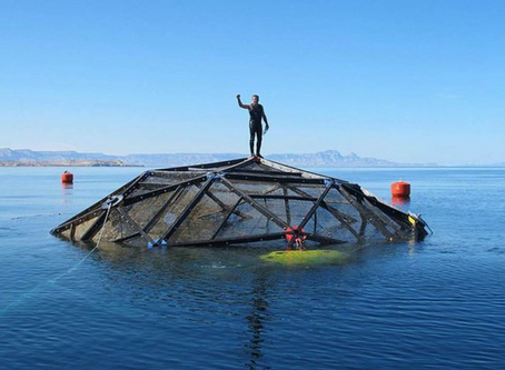Geodesic Domes Are Improving Aquaculture