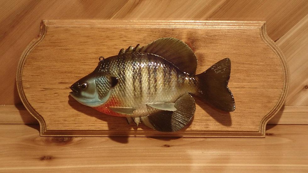 Bluegill Sunfish Decoy Plaque