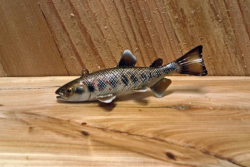 King Salmon Parr