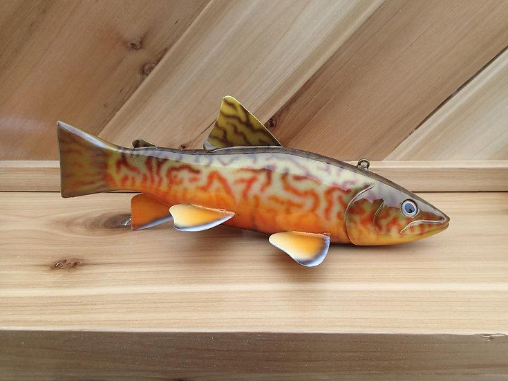 Tiger Trout - WRTT