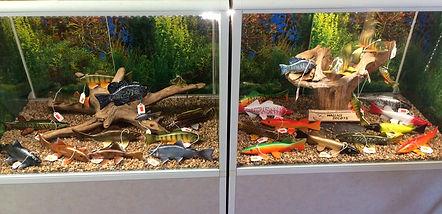Bait shop Fish Decoy Display