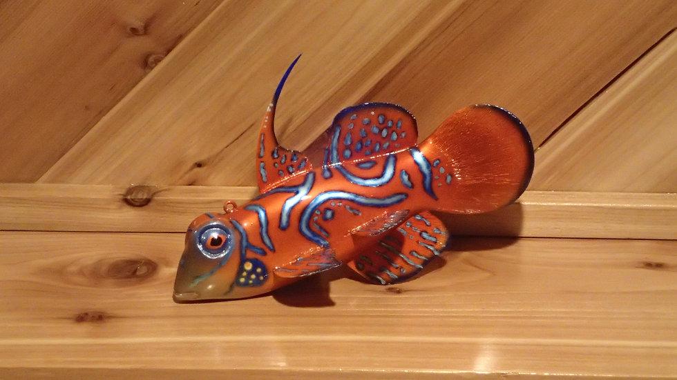 Mandarin Dragonet