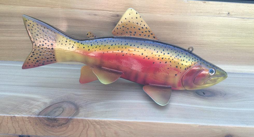 Redband Steelhead Trout - WRRBSHT