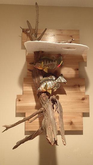 Dual Pumpkinseed Sunfish Mount