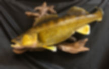 Walleye replica taxidermy