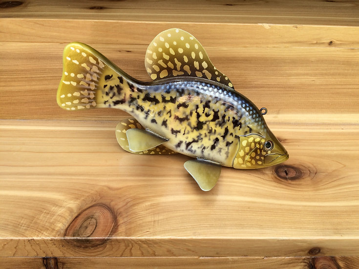 Painted Scale Black Crappie- PSPBC