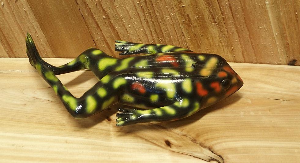 Poison Tree Frog