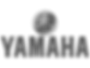 Debonair aerialists opening corporate aerial act for Yamaha