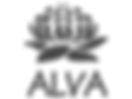 Corporate ground act for ALVA Christmas Party