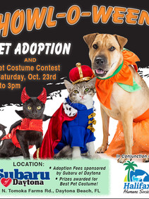 Halifax Humane Society to Host Pet Adoption Event as part of the ASPCA & Subaru Loves Pets