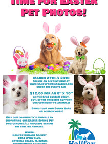 Pet Photography March 27-28