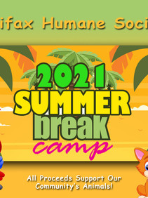 HHS Paws Summer Camp