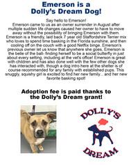 emersondollydreamdog9-9-2021 copy.jpg