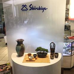 Shirokiya's main show window!!! That's my vase on the left