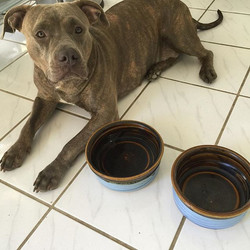 A'kina made 1 today. Her bowls don't look too big for her now