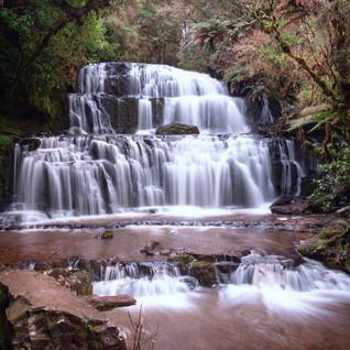 Jungle Falls | Purakaunui Falls, New Zealand