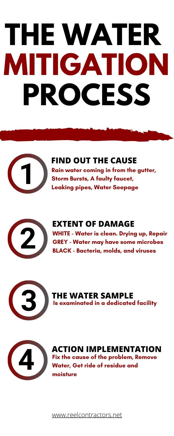 the-water-mitigation-steps-process-infographic